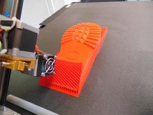 3D printing shoe